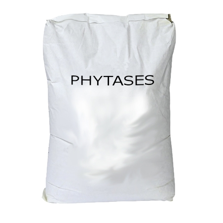 PHYTASES