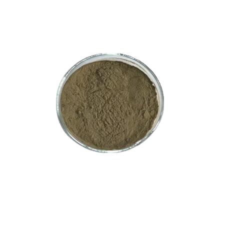 E579 - Gluconate ferreux