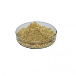 E101 - Riboflavine